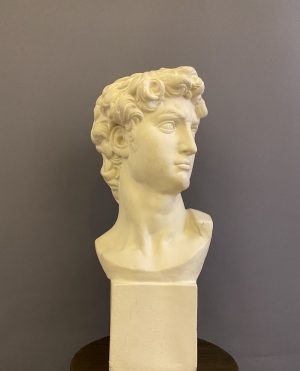 bust of david